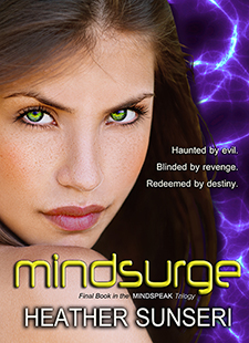 Mindsurge cover 225x310x300