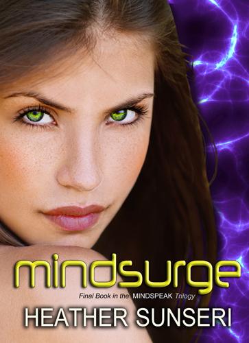 Mindsurge cover 363x500x300
